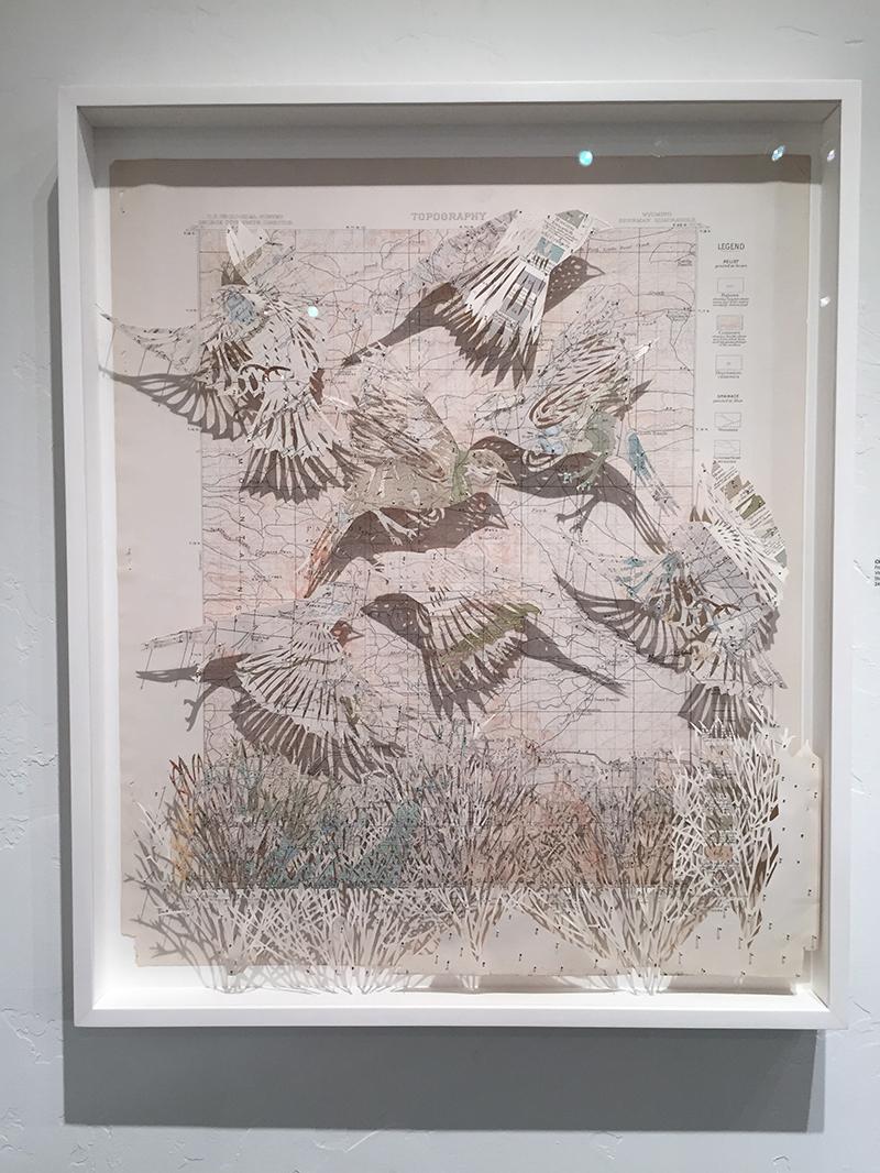 Clairebrewster Aconferenceofbirds Diehl4