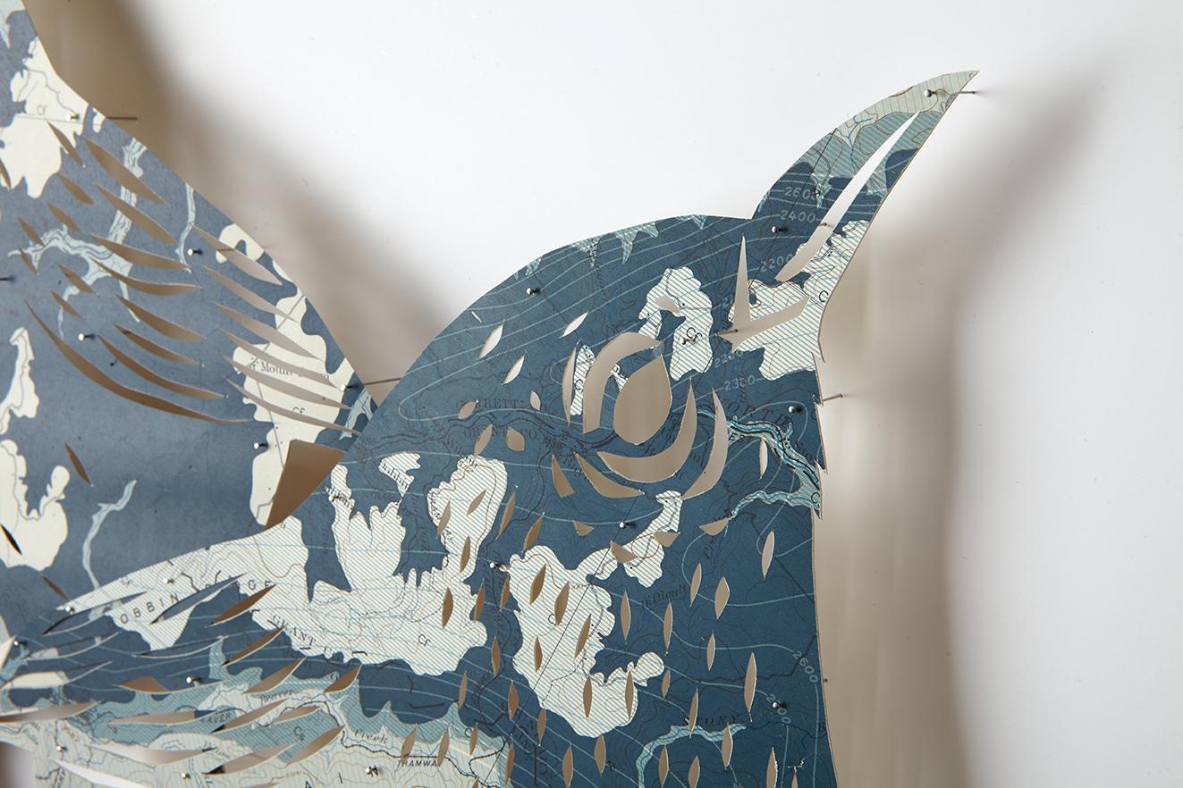 ClaireBrewster Bluebirds 6