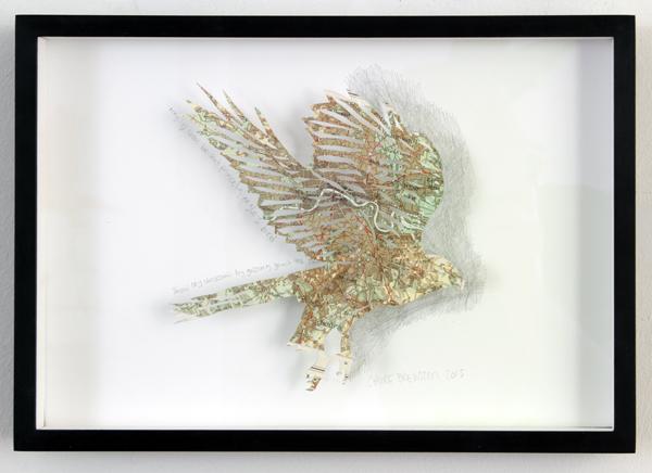 clairebrewster_eagle_framed