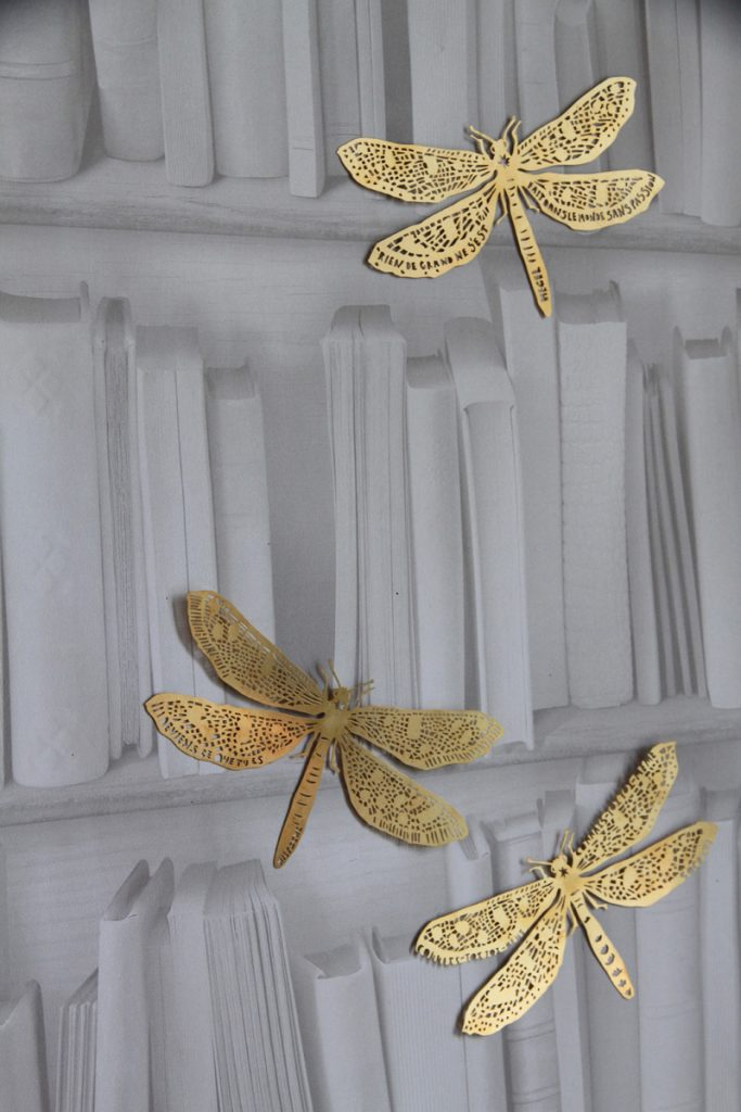 clairebrewster_dragonflies_LivresBlancs
