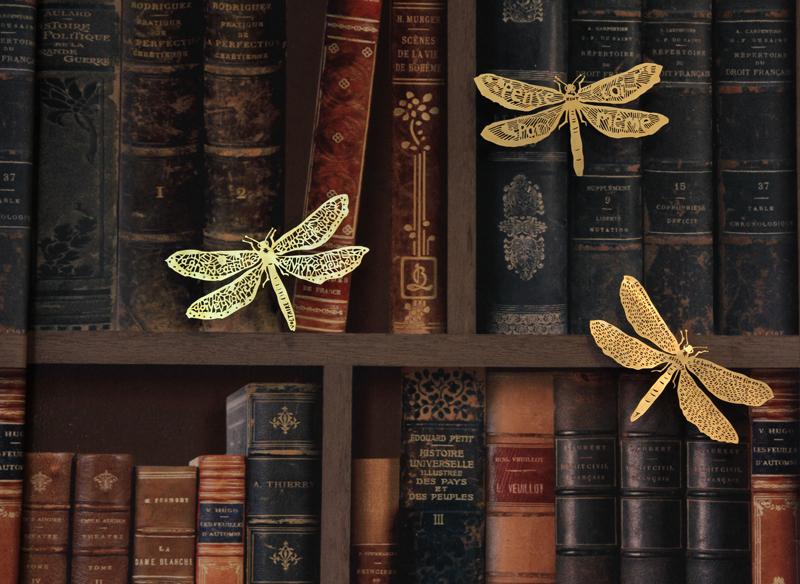 clairebrewster_dragonflies_books