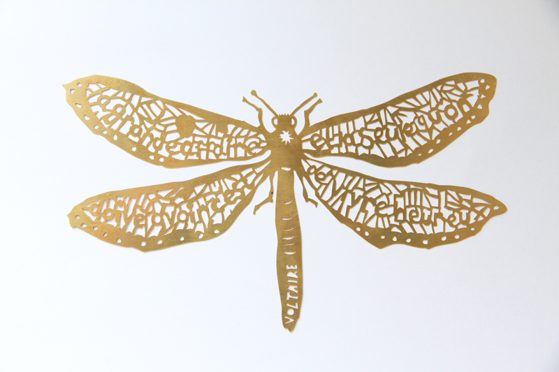 clairebrewster_dragonfly_Voltaire